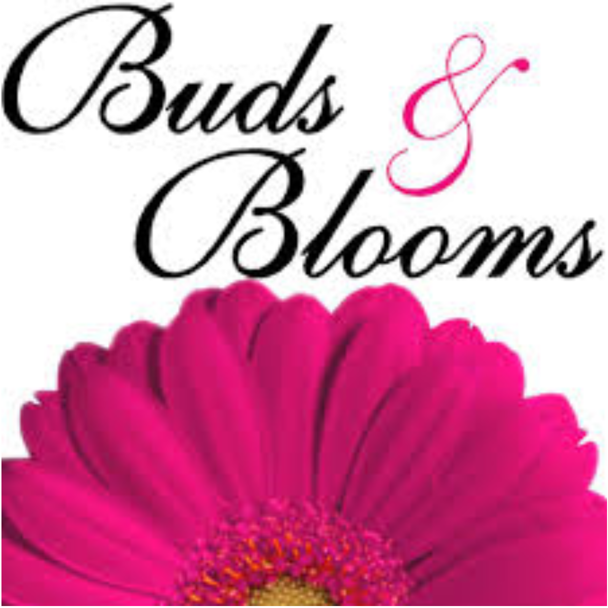 Buds and Bloom Florist